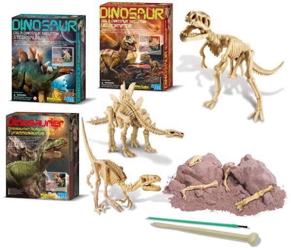 Dino Ausgrabungsset groß