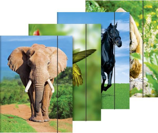 Brunnen Sammelmappe - A4 - Tiermotive