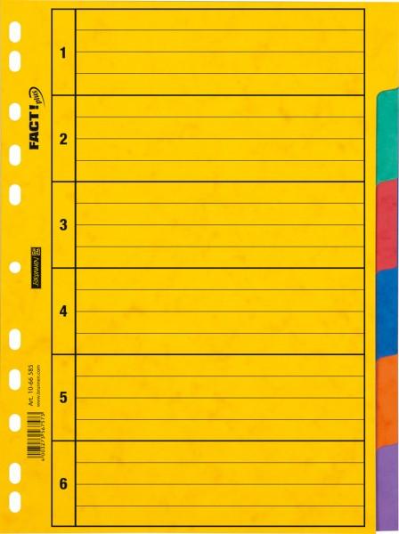 Brunnen Ringbuchregister - A4 - 6tlg - 6 Farben