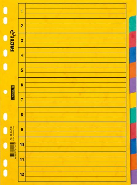 Brunnen Ringbuchregister - A4 - 12tlg - 6 Farben